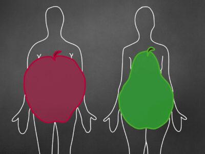 Feelgood's news – Ausgabe Februar / März 2020 –Apfel, Birne und Körperfett